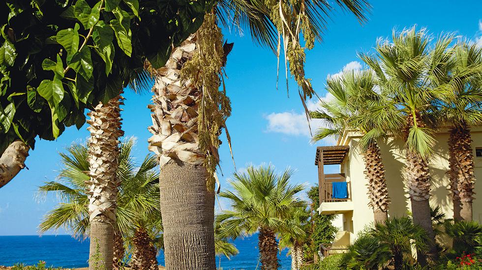 Hotel Grecotel Club Marine Palace & Suites 4* SUP - Creta Chania 4