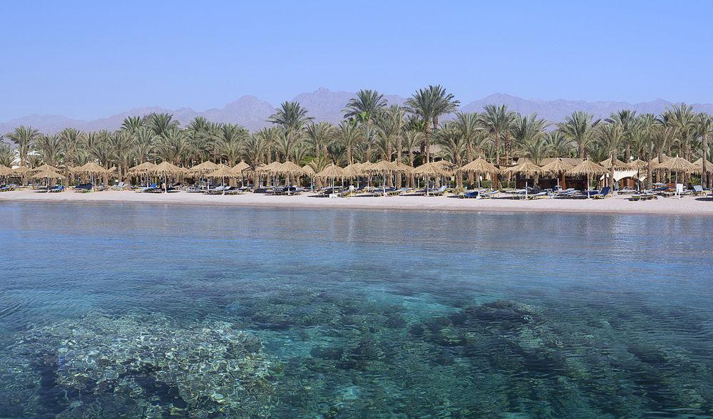 Hilton Fayrouz Resort 4* superior - Sharm El Sheikh  11