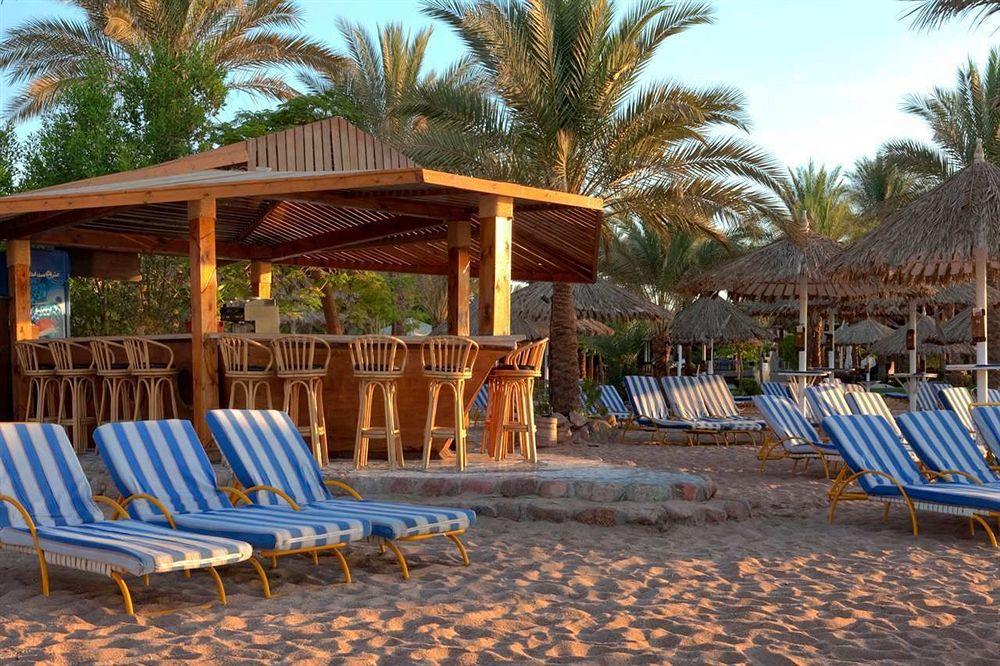 Hilton Fayrouz Resort 4* superior - Sharm El Sheikh  9
