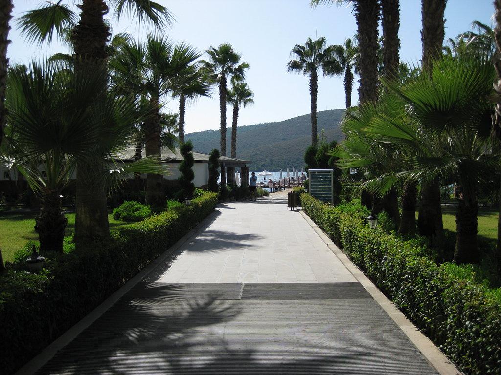 Hotel Crystal Green Bay 5* - Bodrum 10