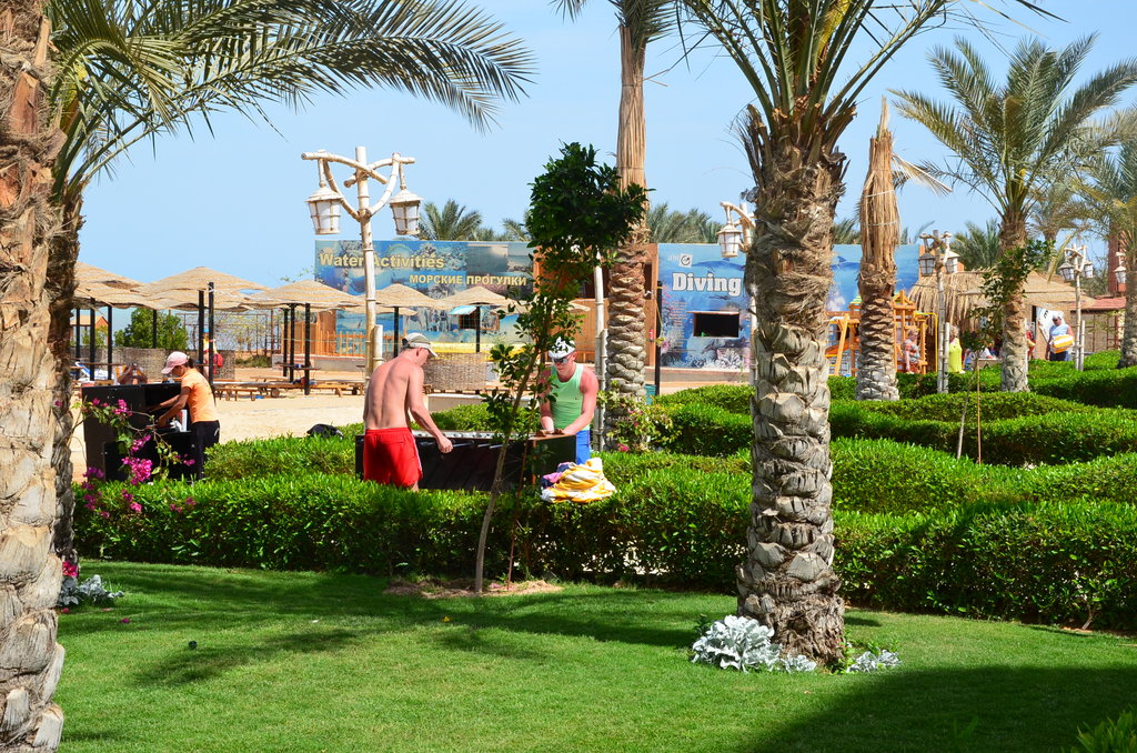 Hotel AMC Royal 5* - Hurghada 14