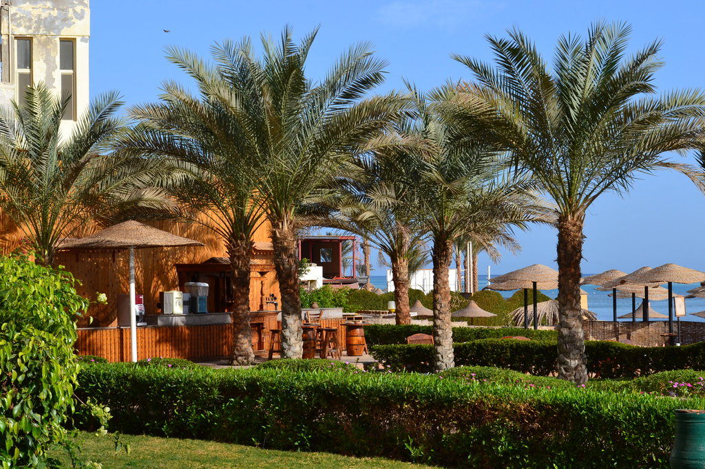 Hotel AMC Royal 5* - Hurghada 15