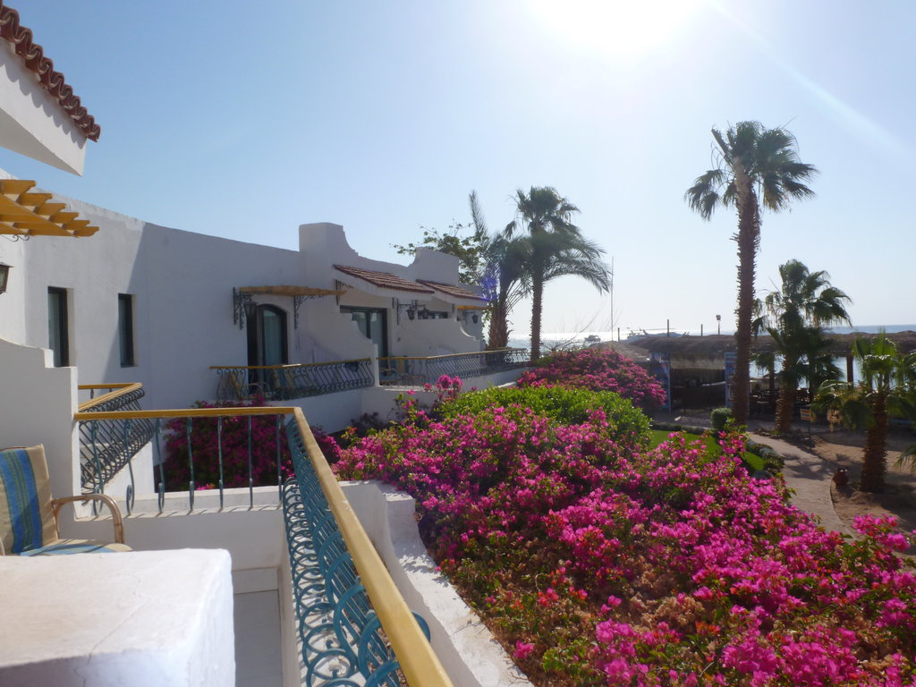 Lotus Bay Safaga 4* - Hurghada 19