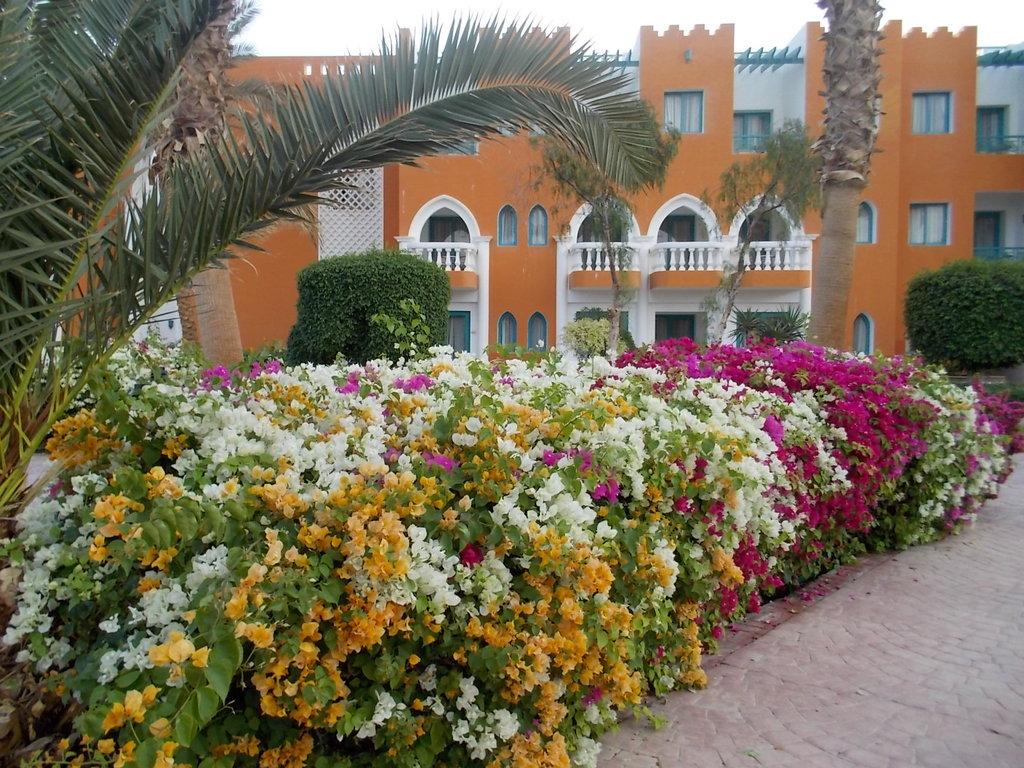 Hotel Sentido Mamlouk Palace 5* - Hurghada 3