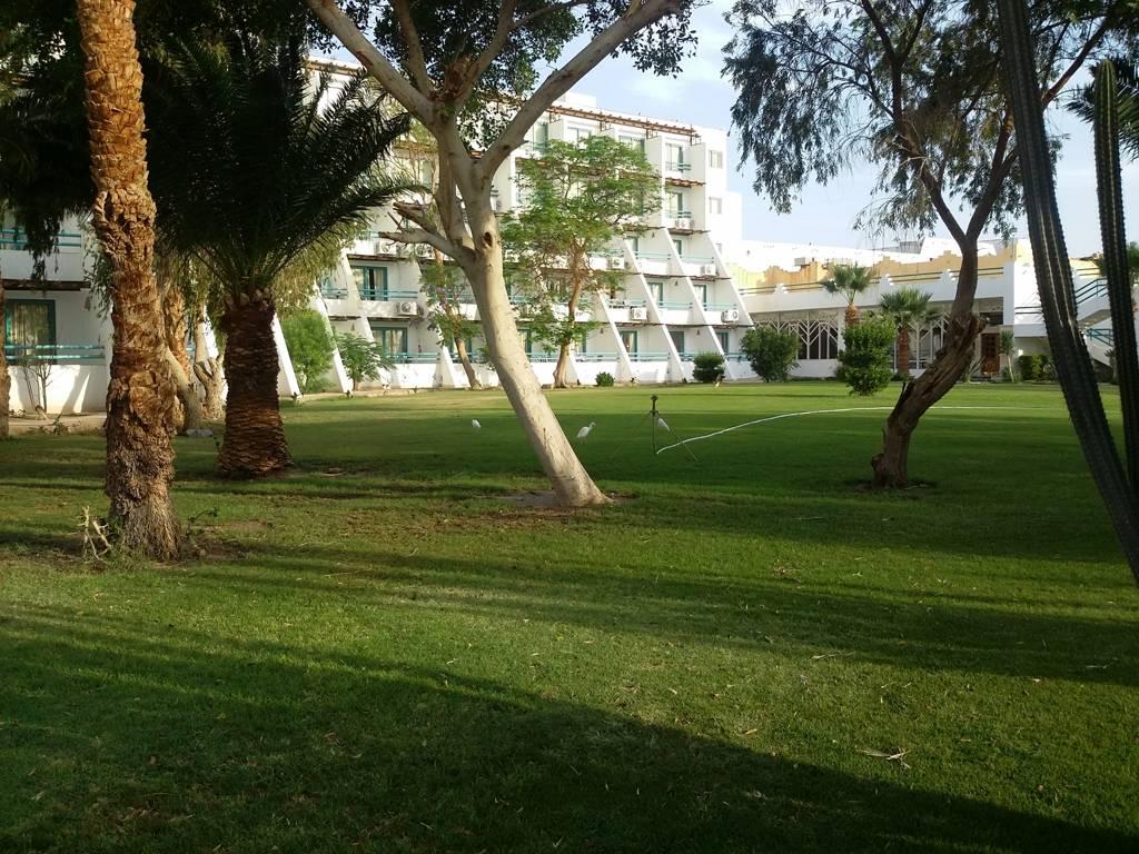Hotel Shams Safaga Beach Resort 4* - Hurghada 4