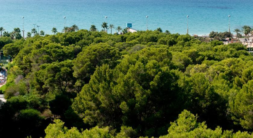 Hotel Grupotel Taurus Park 4* - Palma de Mallorca 2