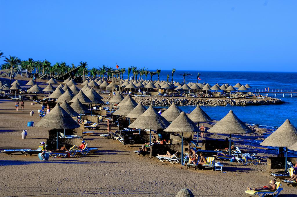 Parotel Beach Resort (EX. Radisson Blu ) 4* Superior - Sharm El Sheikh 5