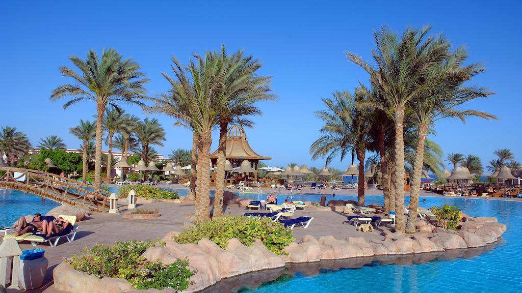 Parotel Beach Resort (EX. Radisson Blu ) 4* Superior - Sharm El Sheikh 2