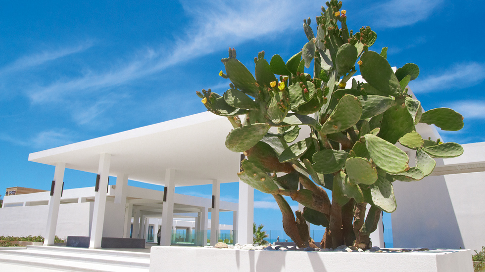 Grecotel White Palace Luxury Resort 5* - Creta Rethymno 8
