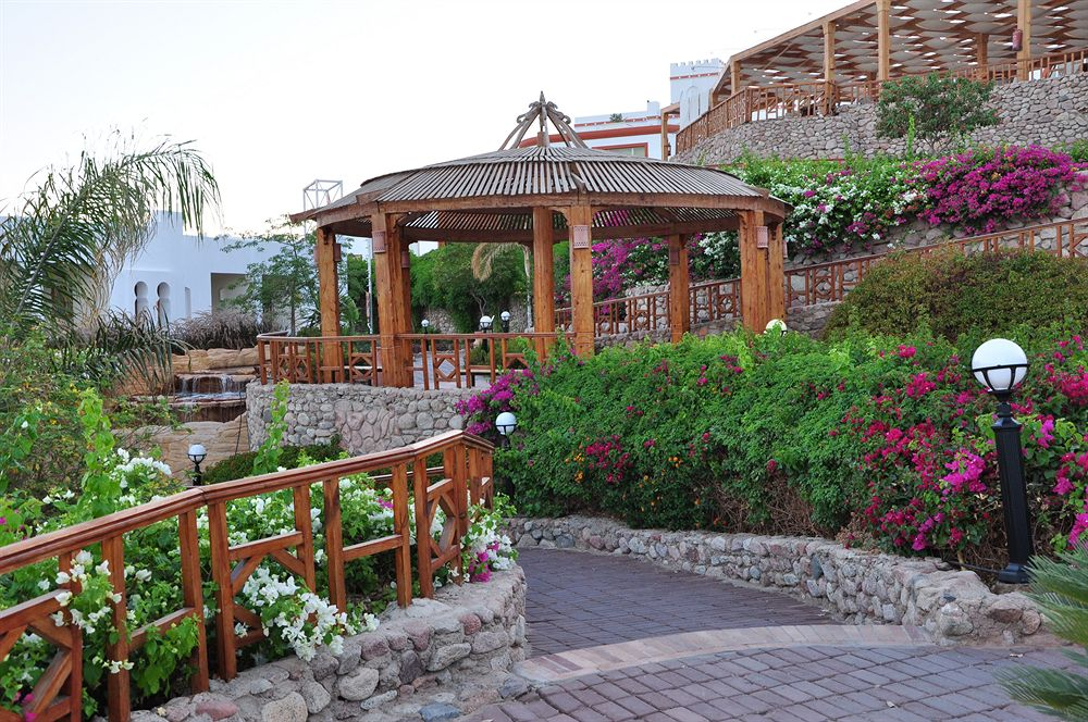 Hotel Sunrise Diamond Beach Resort 5* - Sharm El Sheikh 8