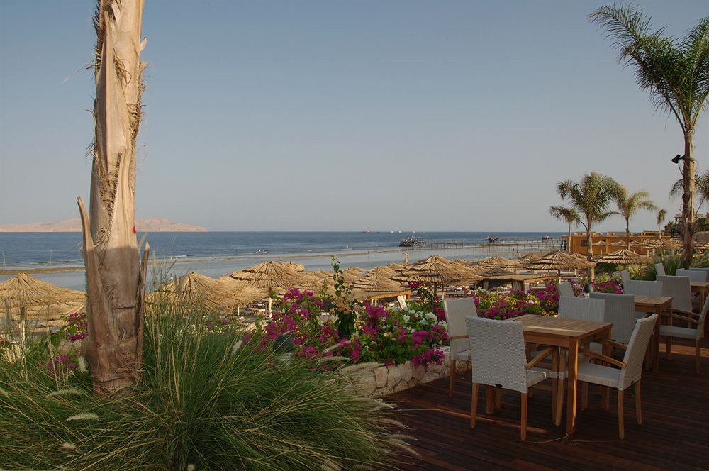 Hotel Cleopatra Luxury Resort 5* - Sharm El Sheikh 4