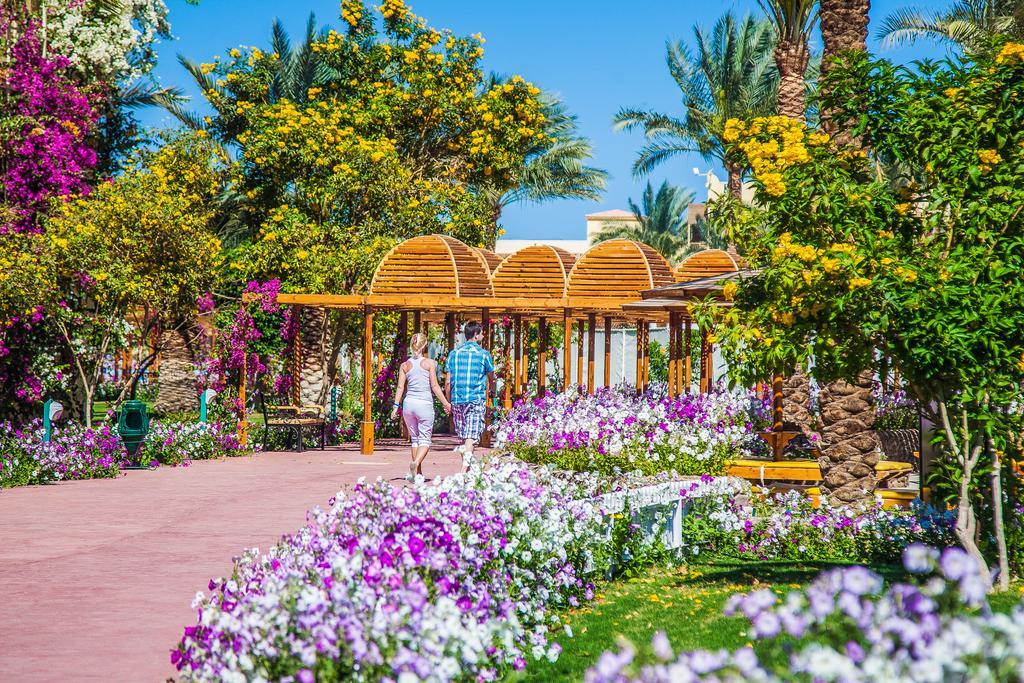Hotel Desert Rose 5* - Hurghada 18