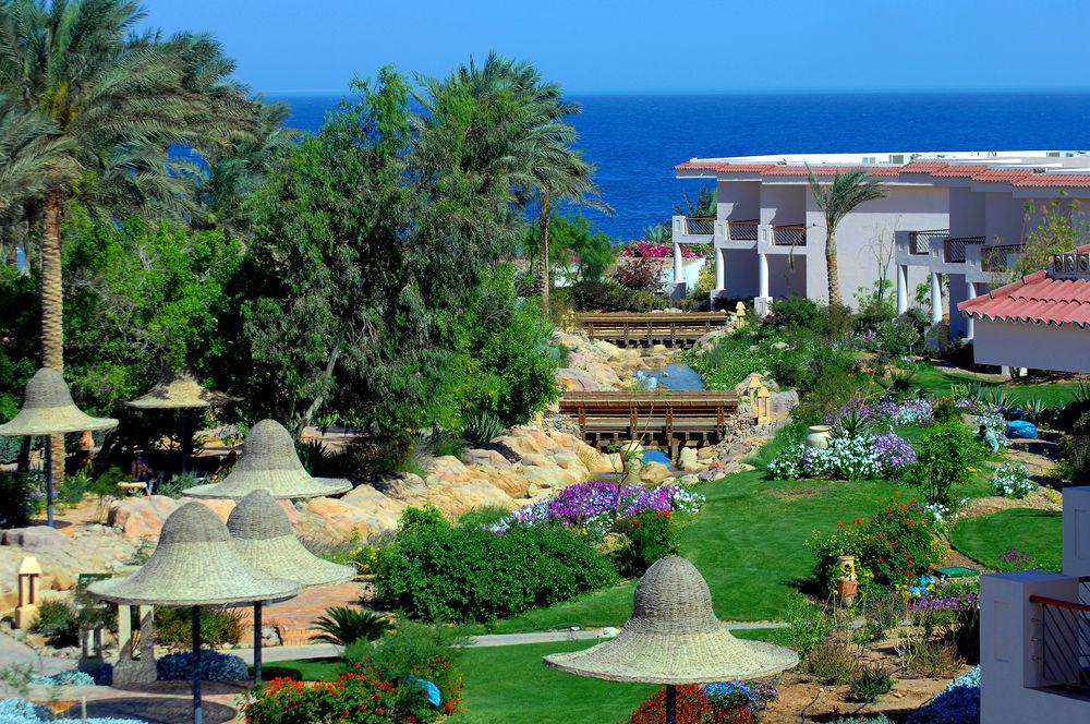 Parotel Beach Resort (EX. Radisson Blu ) 4* Superior - Sharm El Sheikh 11