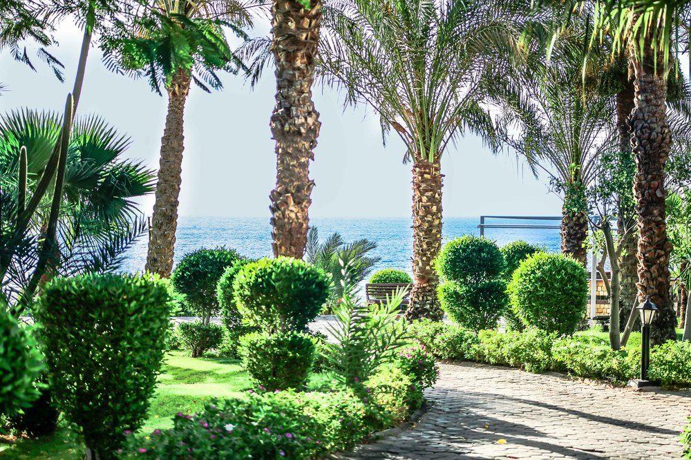 Hotel Sultan Gardens 5* - Sharm EL Sheikh 22
