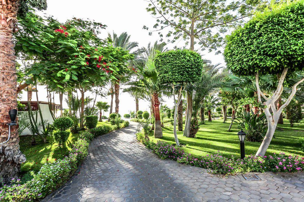 Hotel Sultan Gardens 5* - Sharm EL Sheikh 25