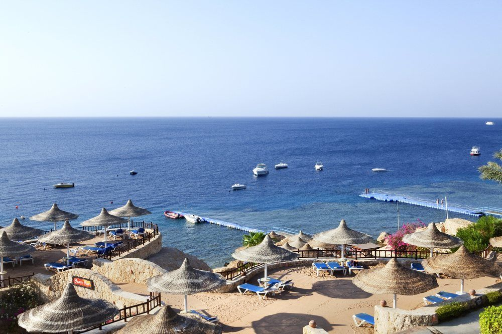 Hotel Hilton Sharm Sharks Bay Resort 4* - Sharm El Sheikh 13