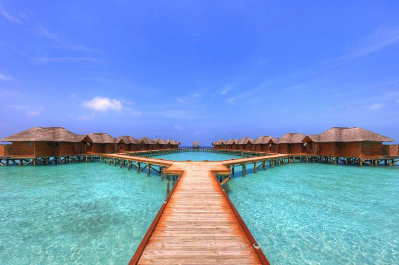 Vacanta revelion 2017 hotel fihalhohi 3 maldive - Black friday tenerife 2017 ...
