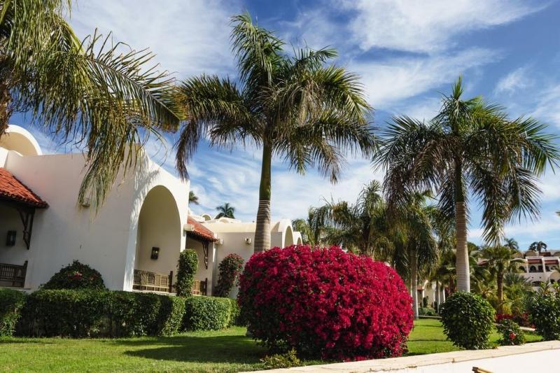 Hotel Movenpick Resort 5* - Sharm el Sheikh 7