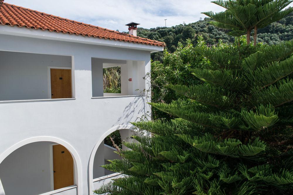 Hotel Paradise 3* - Zakynthos Argassi 12