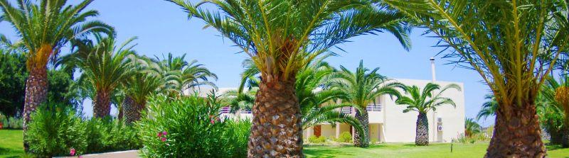 Hotel Eleftheria 3* - Creta Chania 1