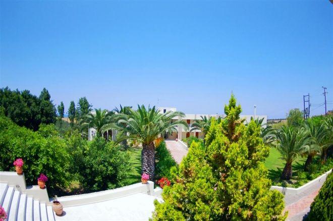 Hotel Eleftheria 3* - Creta Chania 8