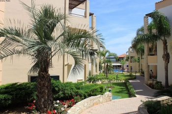 Hotel Creta Palm Resort 4* - Creta Chania  9