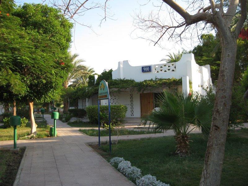 Hotel Shams Safaga Beach Resort 4* - Hurghada 6