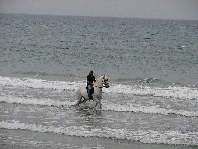 Hotel Mediterannean Beach 5* - Zakynthos Laganas 9