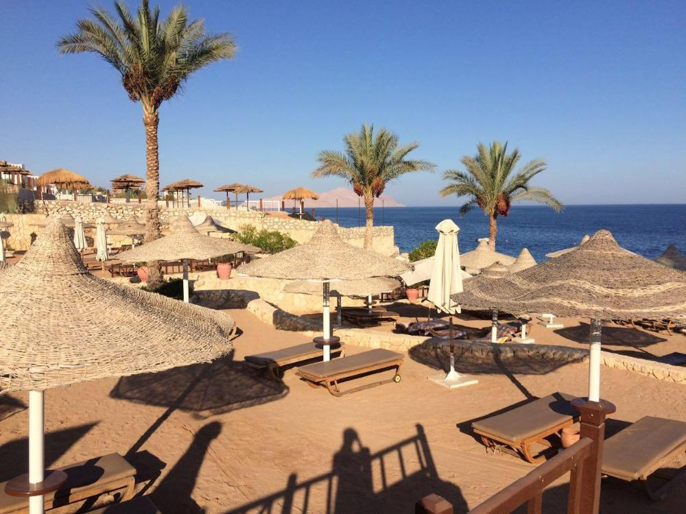 Hotel Hilton Sharm Sharks Bay Resort 4* - Sharm El Sheikh 1