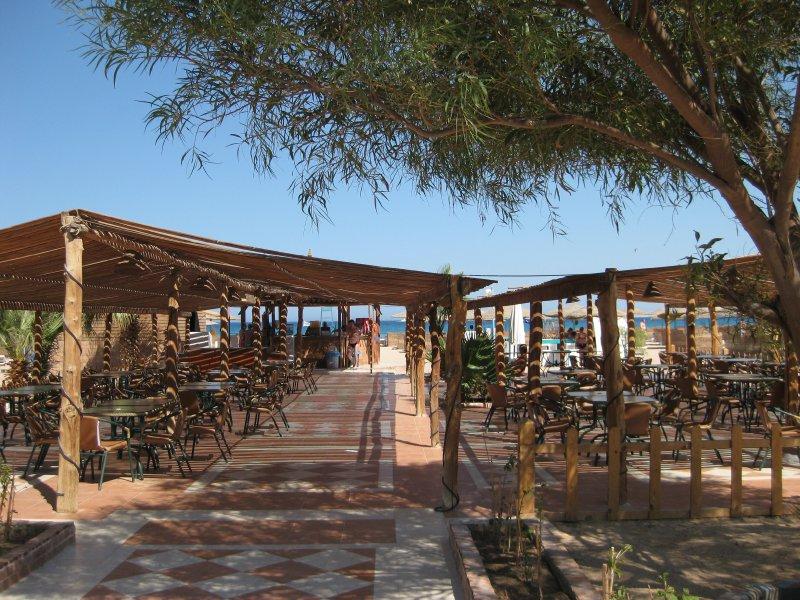 Hotel Shams Safaga Beach Resort 4* - Hurghada 8