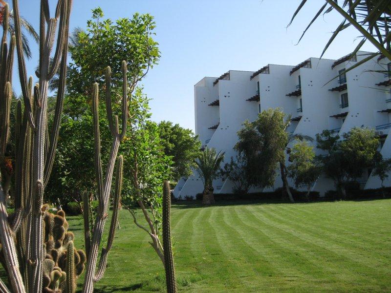 Hotel Shams Safaga Beach Resort 4* - Hurghada 11