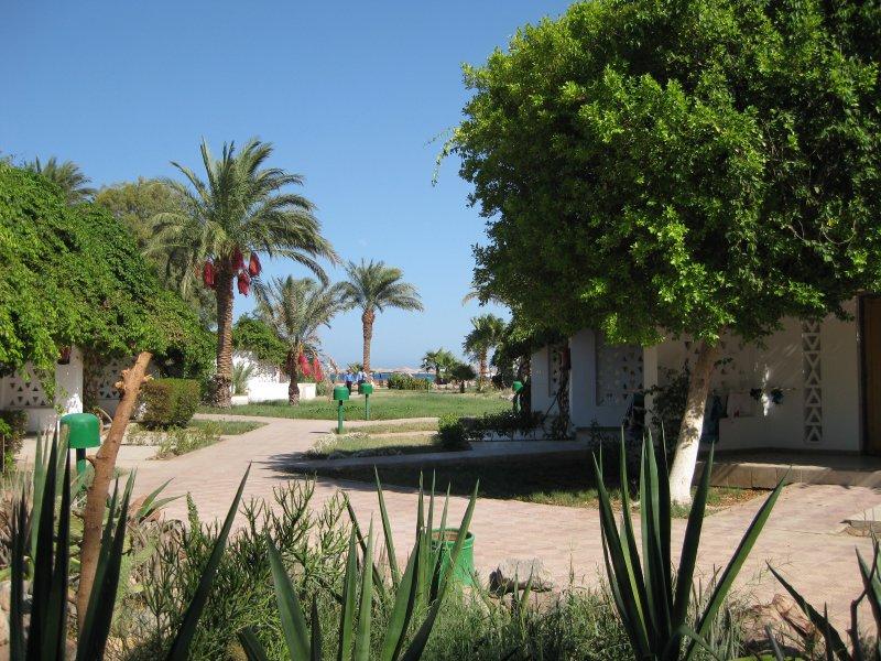 Hotel Shams Safaga Beach Resort 4* - Hurghada 12