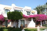 Lotus Bay Safaga 4* - Hurghada