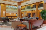 Hotel Hilton Sharm Sharks Bay Resort 4* - Sharm El Sheikh
