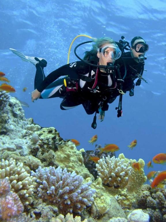 Hotel Steigenberger Al Dau Beach 5* - Hurghada 19