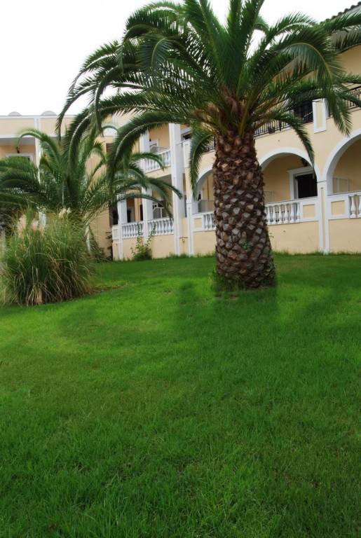 Hotel Palmyra 3* - Zakynthos 6
