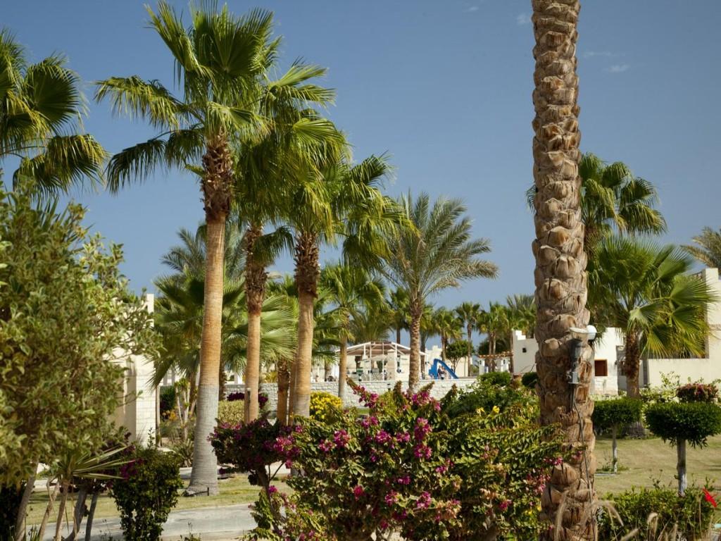 Hotel Coral Beach 4* - Hurghada 8