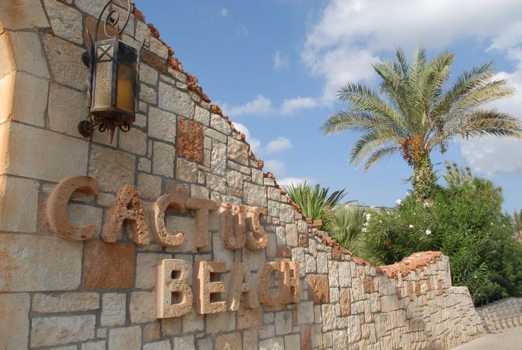 Hotel Cactus Beach 4* - Creta Heraklion 8