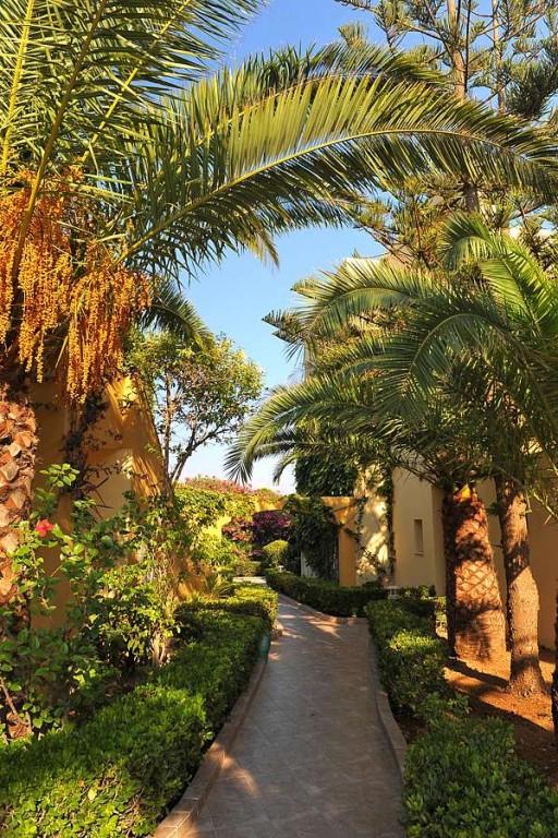 Hotel Vantaris Beach 4* - Creta Chania  8